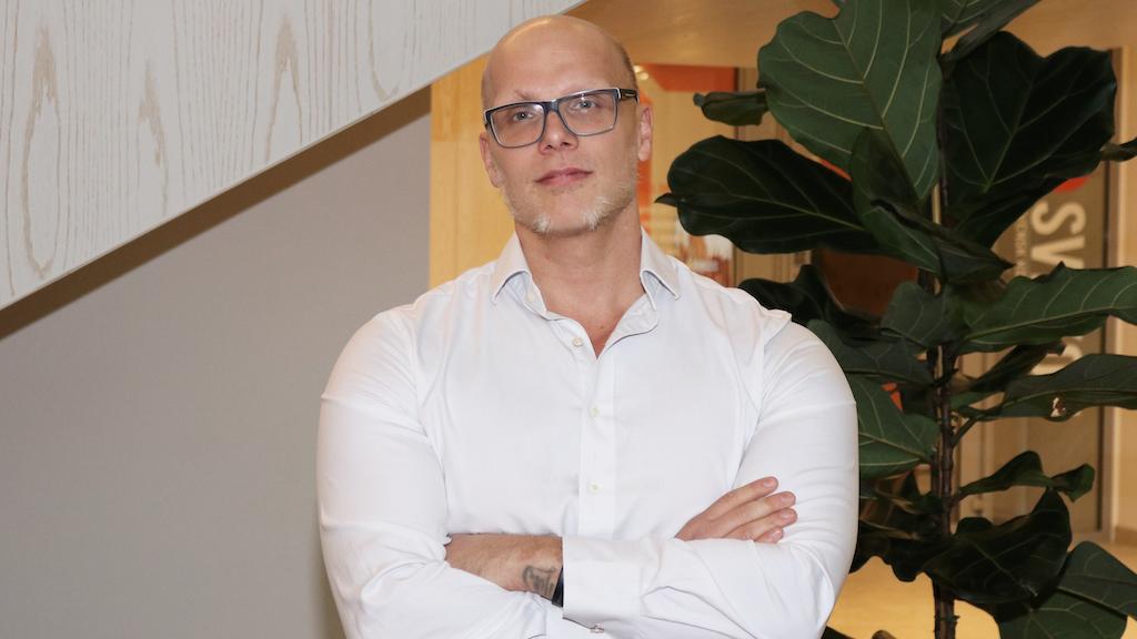 Magnus Järnhandske, IT-säkerhetsexpert